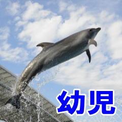 名古屋港水族館 幼児